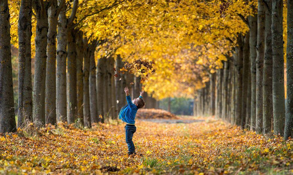 L'autunno a Straubing