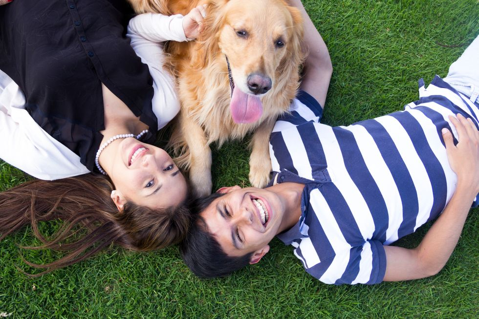 Dogalize: il social dei cani vince gli Oscar del web