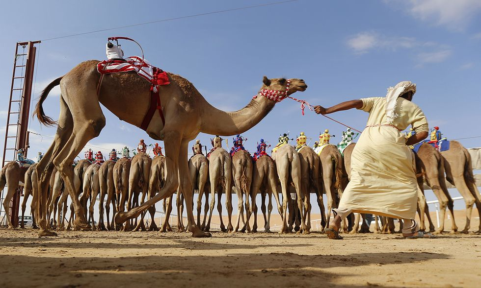 Fetival delle Dune nel deserto di Liwa