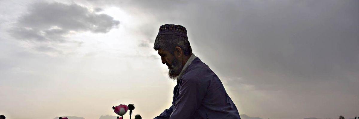 campo oppio afghanistan talebani