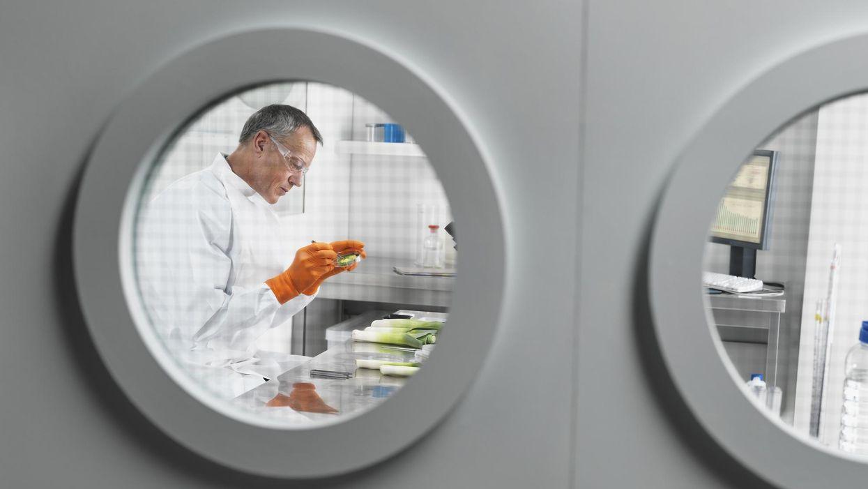 Le insidie della cucina globale