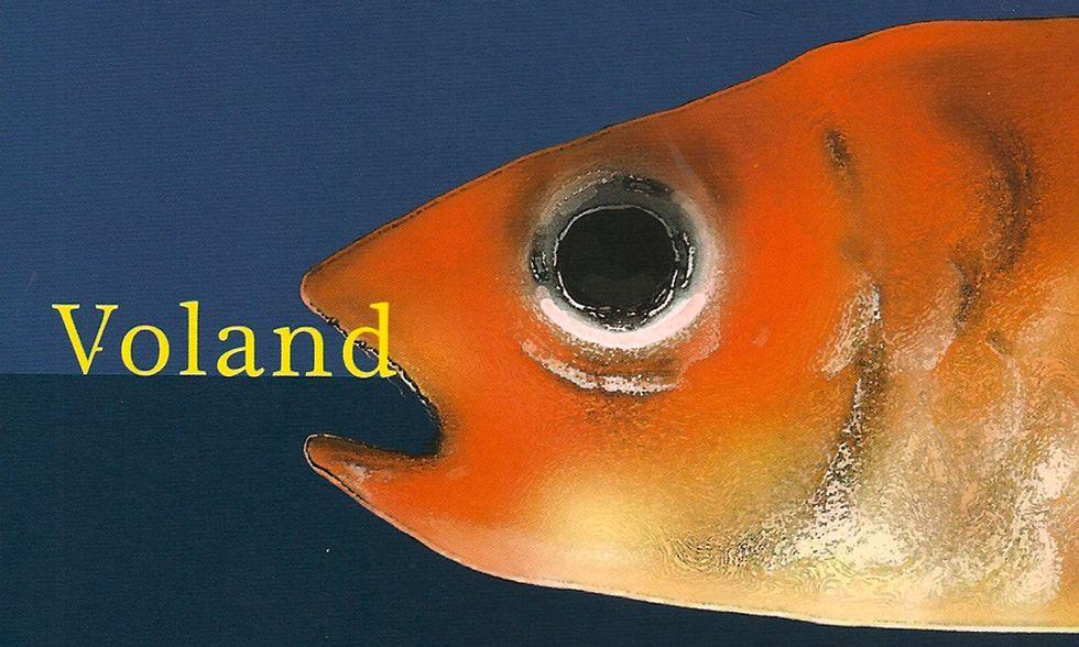 Ilaria Gaspari, 'Etica dell'acquario' - La recensione