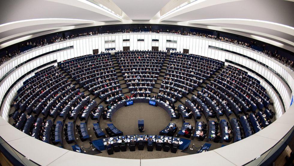 europee 2019 come funziona parlamento alleanze di maio gilet gialli