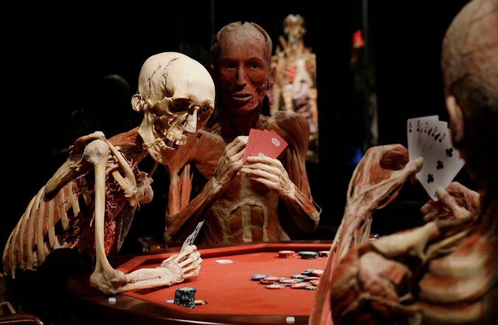 Body Worlds: il corpo umano in mostra a Milano