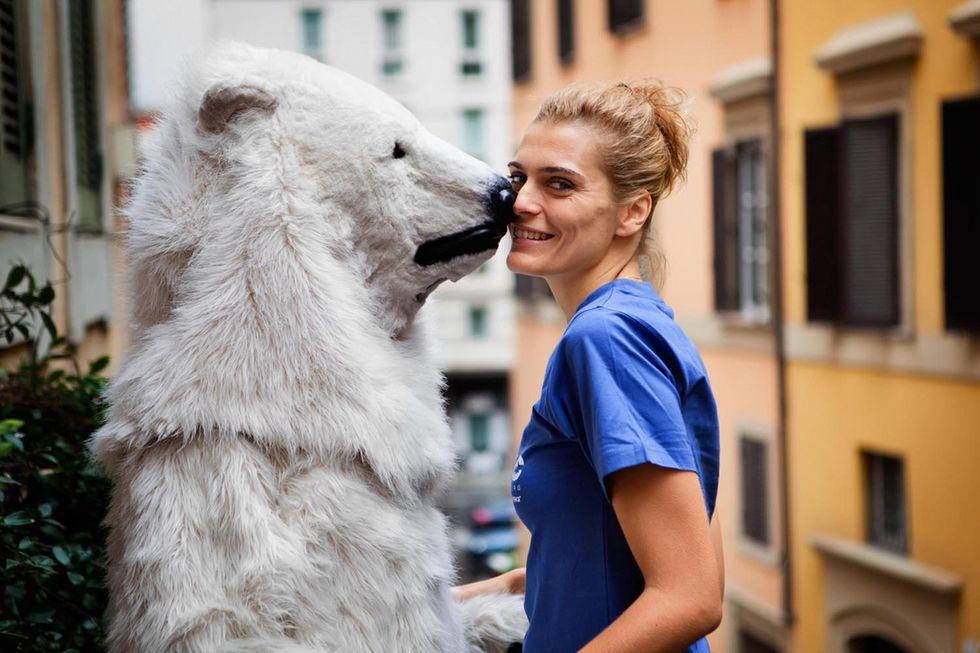 Abbracciati a un orso polare, per salvare l'Artico