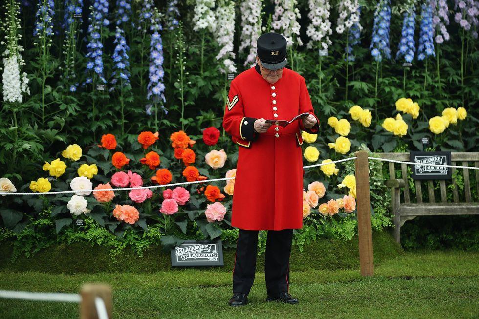 A Chelsea lo spettacolo dei fiori (n° 100)