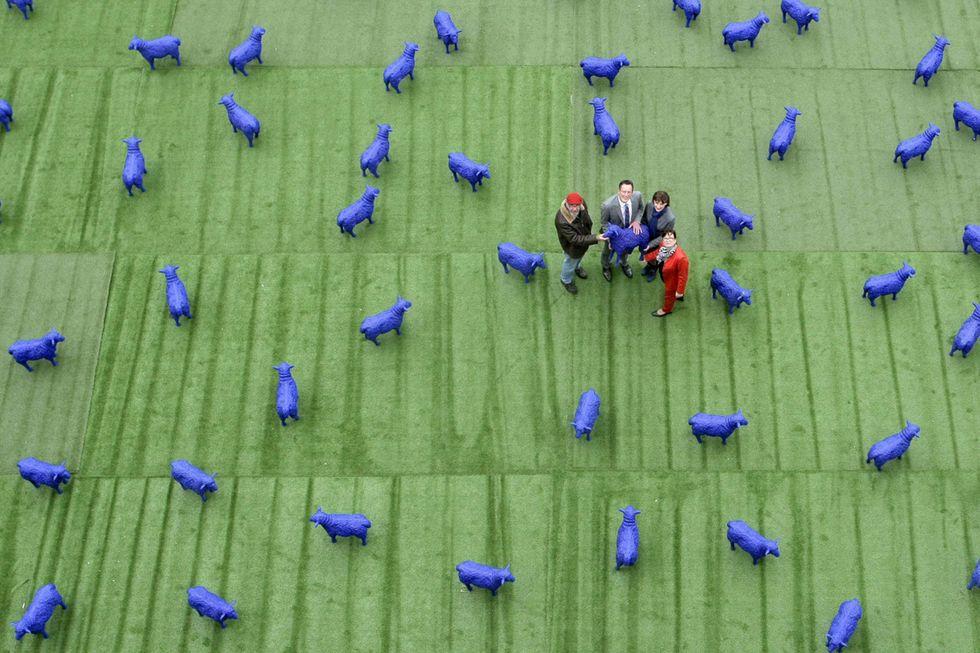 Le pecore blu per la pace e altre foto del giorno, 29.5.13