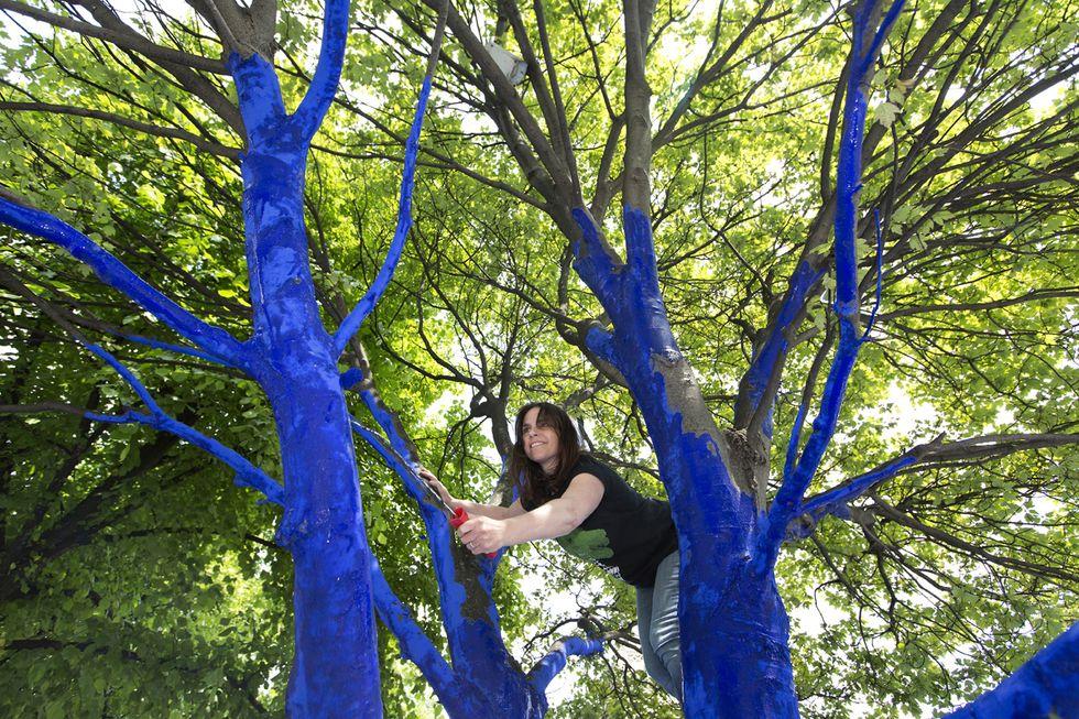 Alberi blu a Londra e altre foto del giorno, 25.6.13