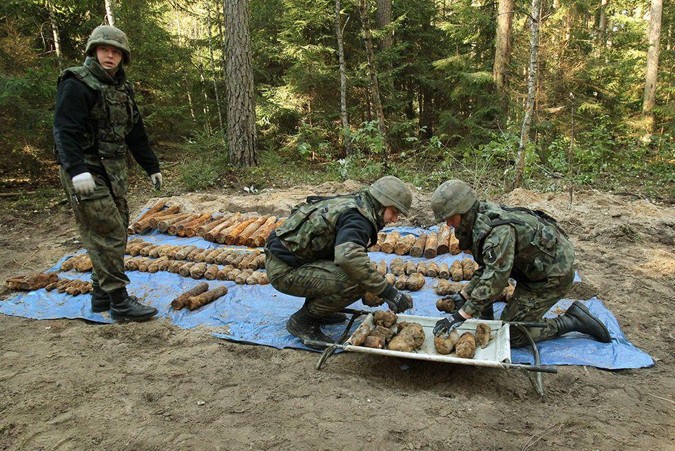 Munizioni della II Guerra mondiale nei boschi della Polonia