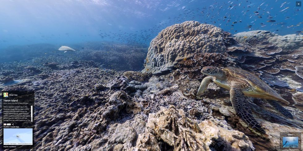 Google street view: foto sferiche alla Grande barriera corallina