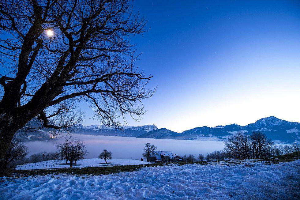 Le foto più belle della settimana - 13/19 dicembre