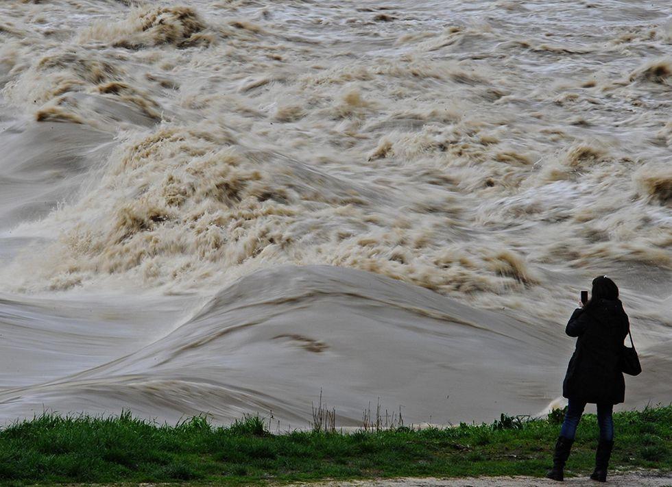 L'Arno in piena e altre foto del giorno, 11.2.2014