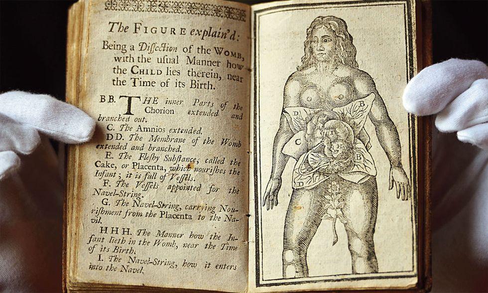 Trattato di educazione sessuale, scappatella nel nome di Aristotele