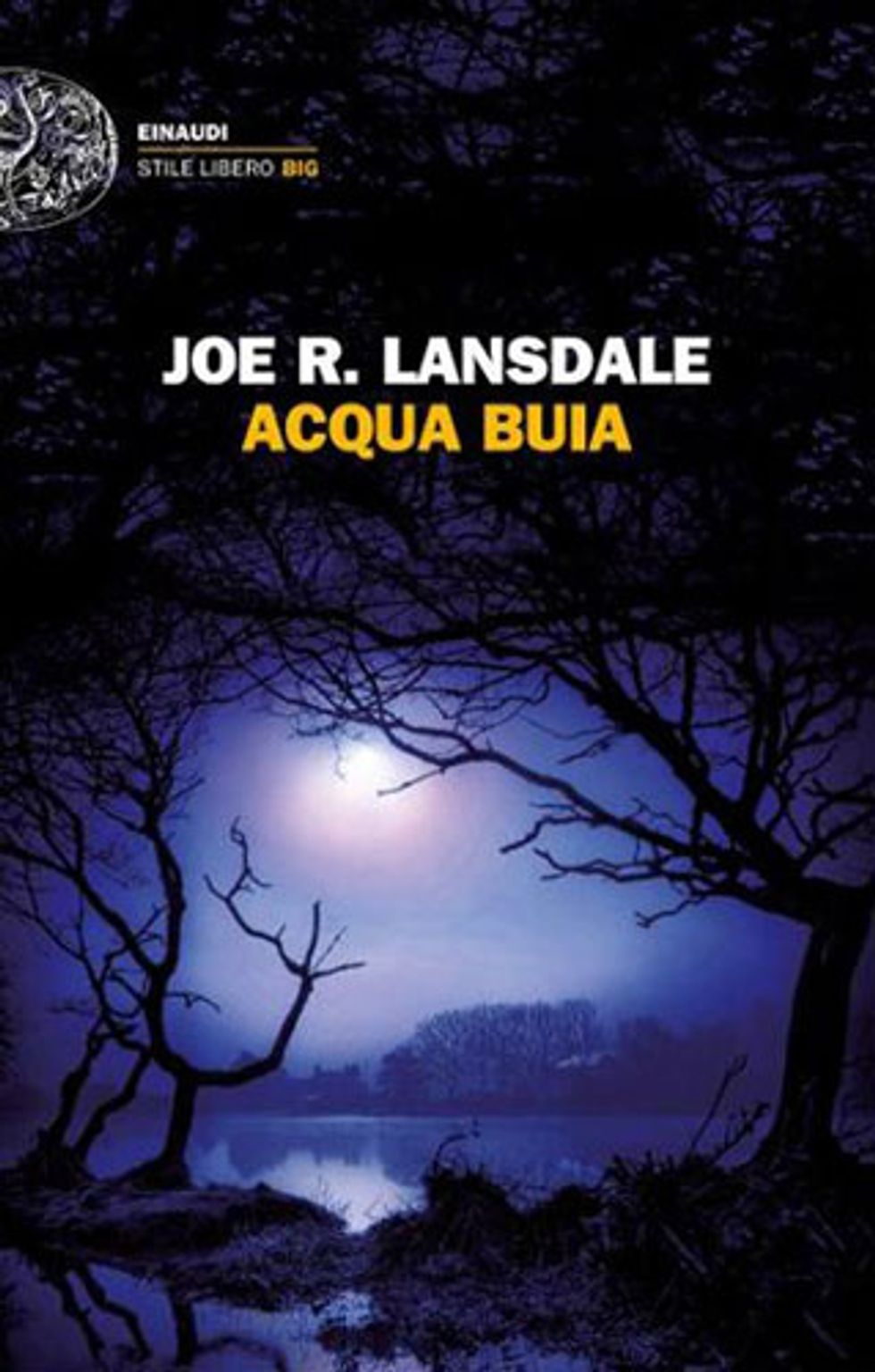 Joe R. Lansdale e 'Una coppia perfetta': il nuovo libro con Hap e Leonard