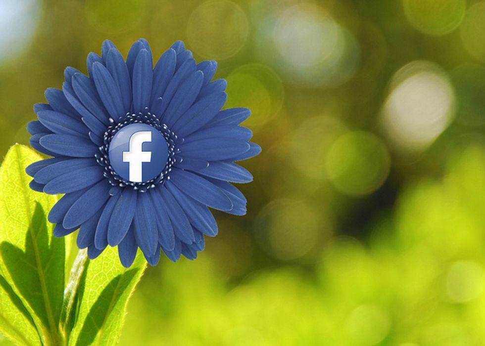 Facebook: icone e link entrano nello status