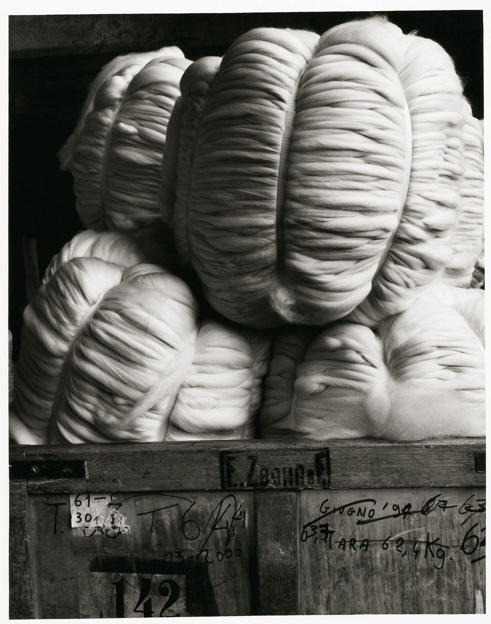 Ermenegildo Zegna: questa lana vale 2 miliardi