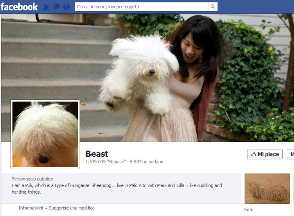 Facebook: più di 100 milioni di utenti non sono umani