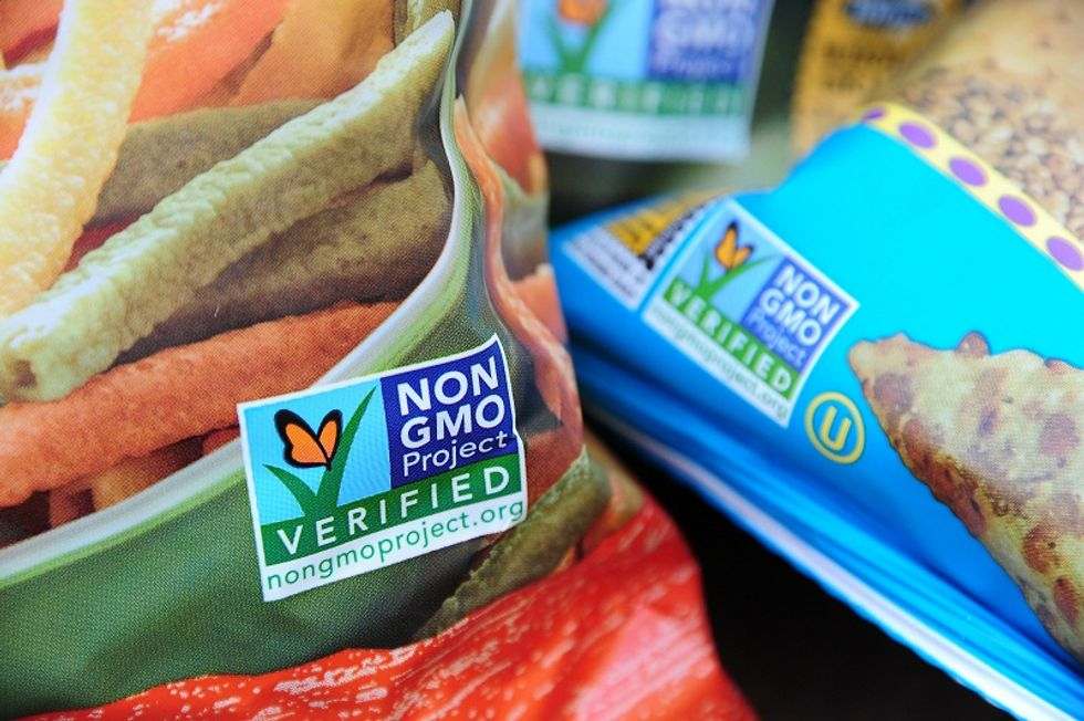 Italian agricultural minister intends to ban GMO cultivation