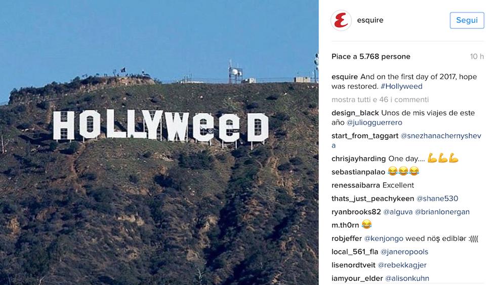 Hollywood Hollyweed