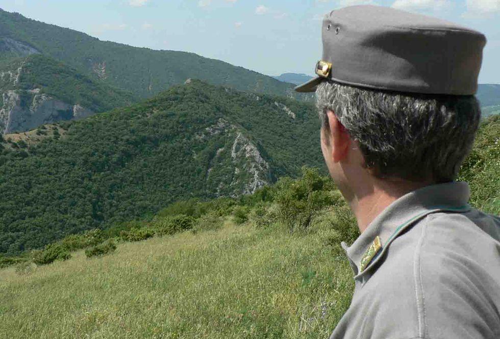 forestale_carabinieri