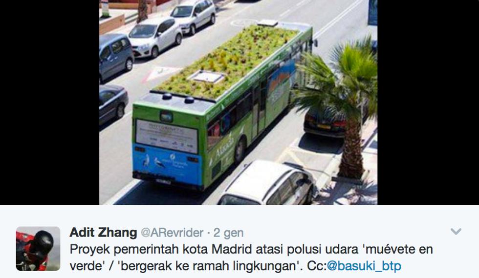 A Madrid giardini pensili sul bus contro lo smog