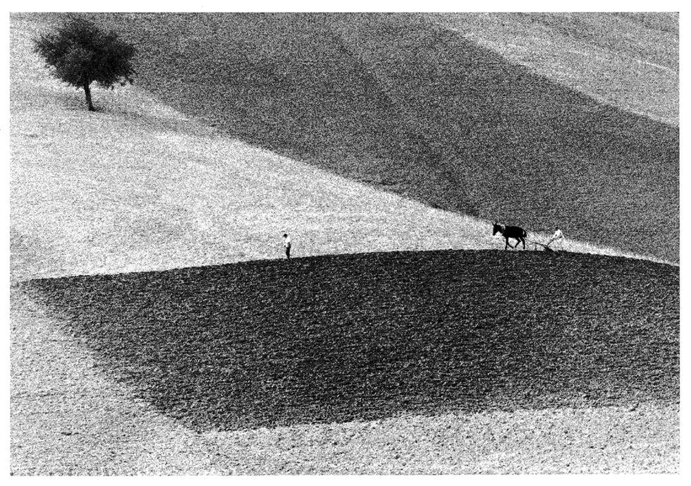Paesaggi con figure: foto di Berengo Gardin, Branzi e Gronsky