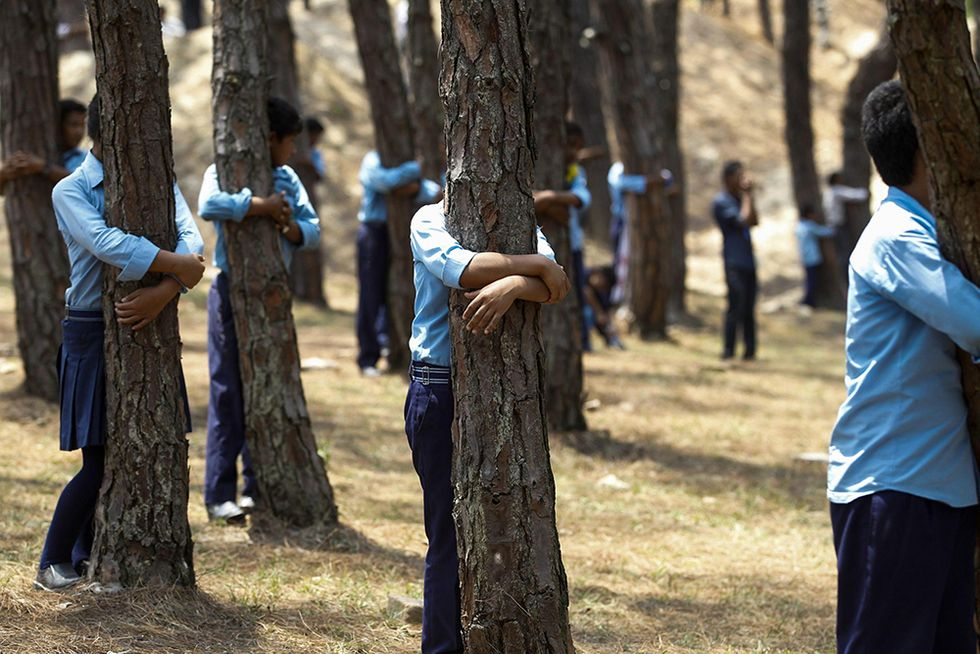 Nepal, abbracciati agli alberi per l'ambiente