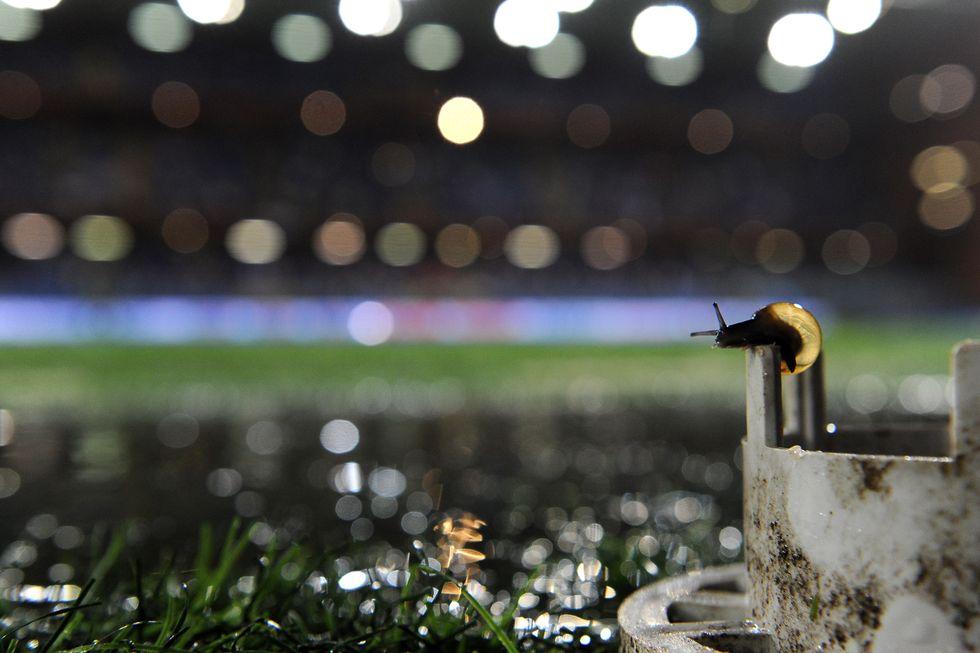 Sampdoria - Genoa 0-3: Dio esiste ed è buono.