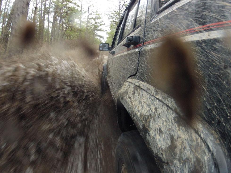 GoPro, sette video spettacolari e imperdibili