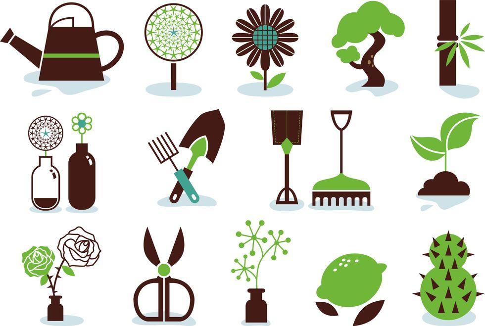 Come diventare Garden Designer