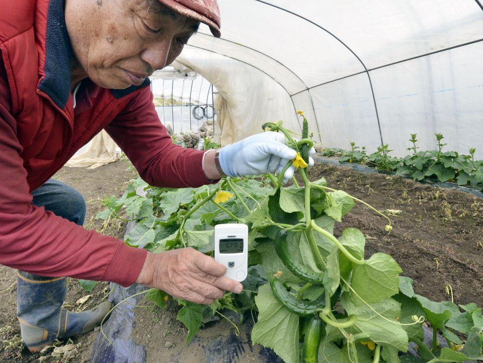 Noi che resistiamo a Fukushima