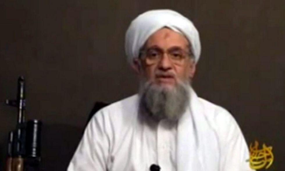 Piccole Al Qaeda, grandi danni