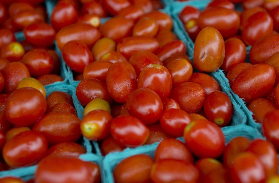 La Campania, lo scoop e la verità sul pomodoro
