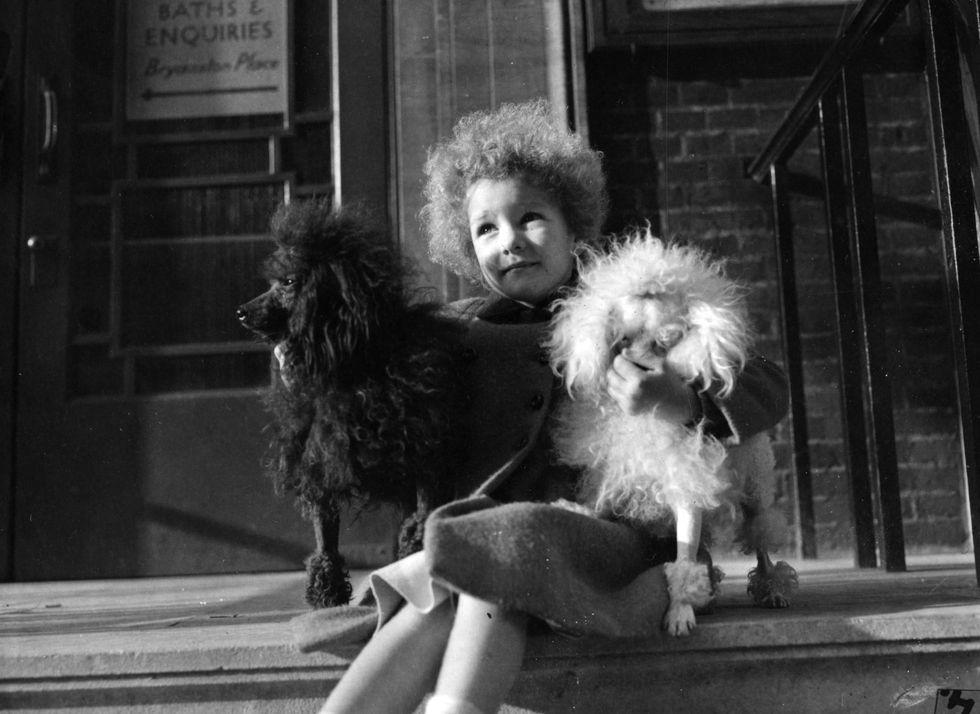 Cani e padroni: ecco perché si assomigliano