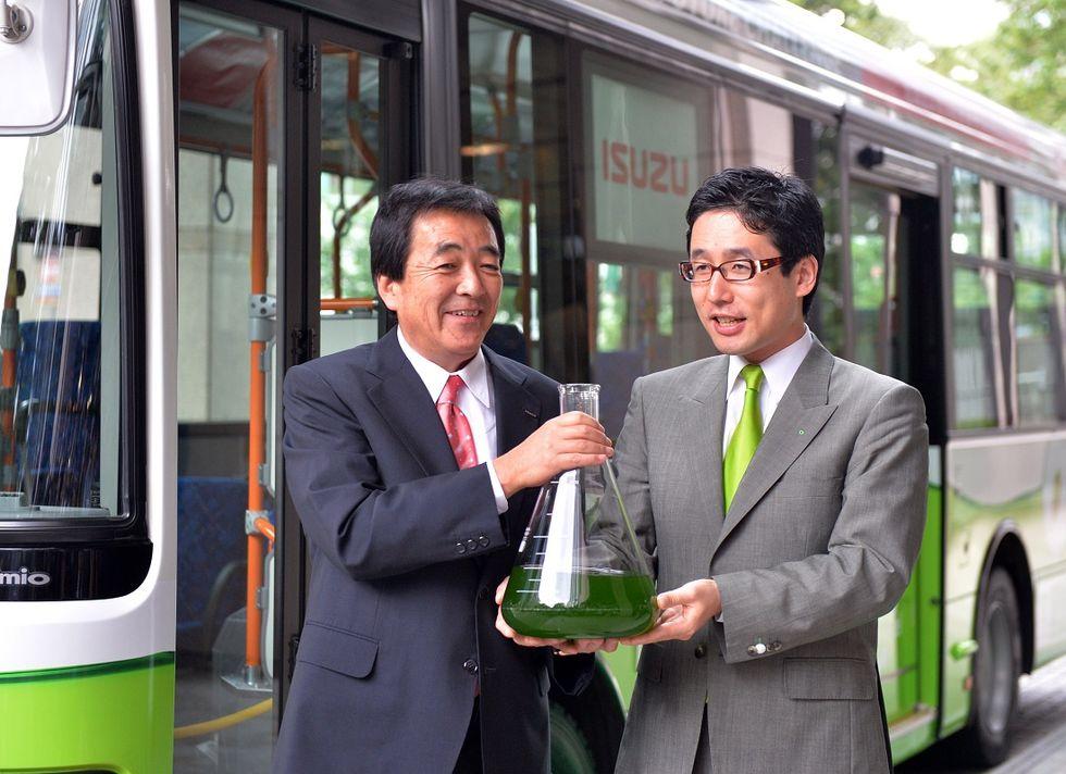 giappone-alghe-carburante