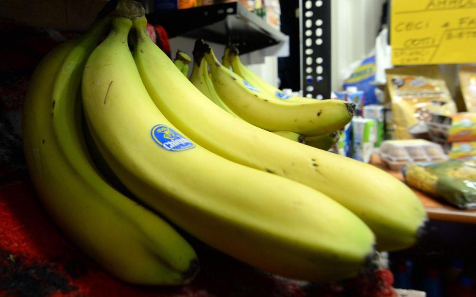 Chiquita: perché una banana su cinque nel mondo avrà il bollino blu