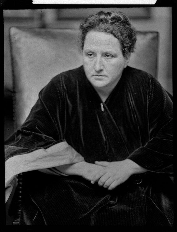 Basket e Gertrude Stein. Ovvero quando uno scrittore ama il suo cane (e ne scrive)