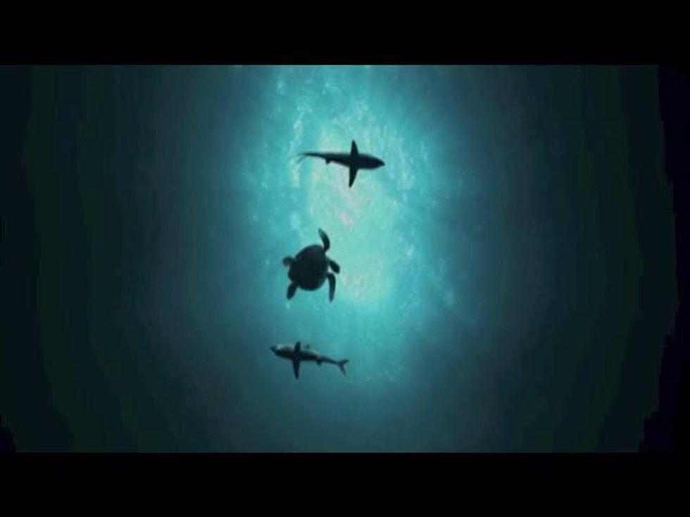 Sea Rex: ecco i dinosauri marini in 3D