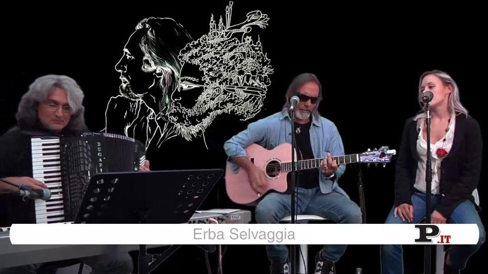 Marco Ferradini a Panorama Unplugged: Erba selvaggia e Albergo a ore