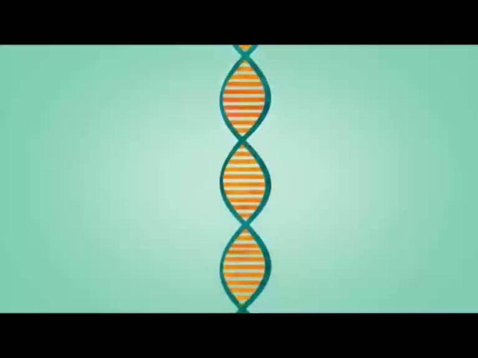A ognuno il suo genoma