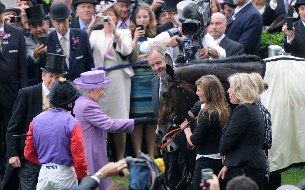 Positivo al doping il cavallo della regina