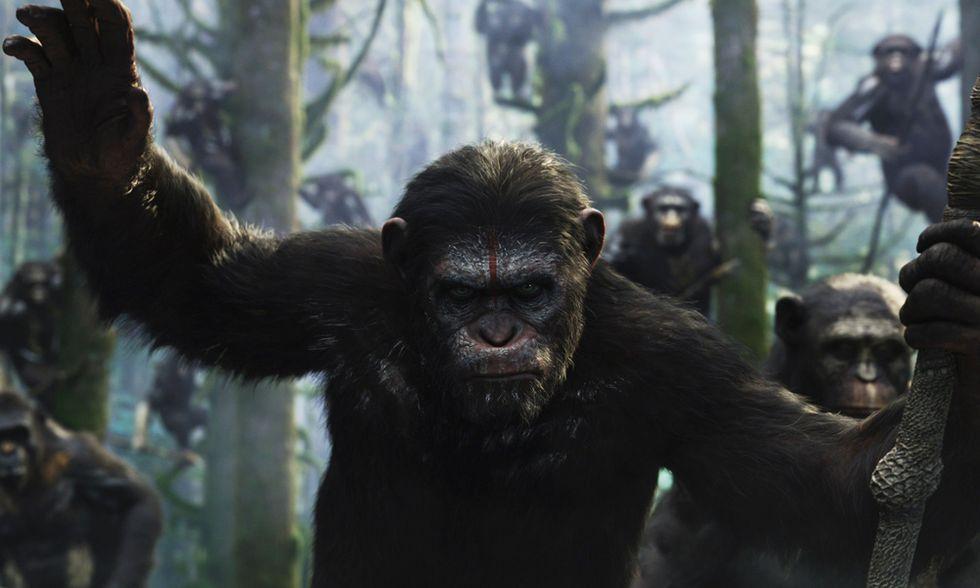 Apes Revolution - Il pianeta delle scimmie, thriller di Matt Reeves: 5 cose da sapere