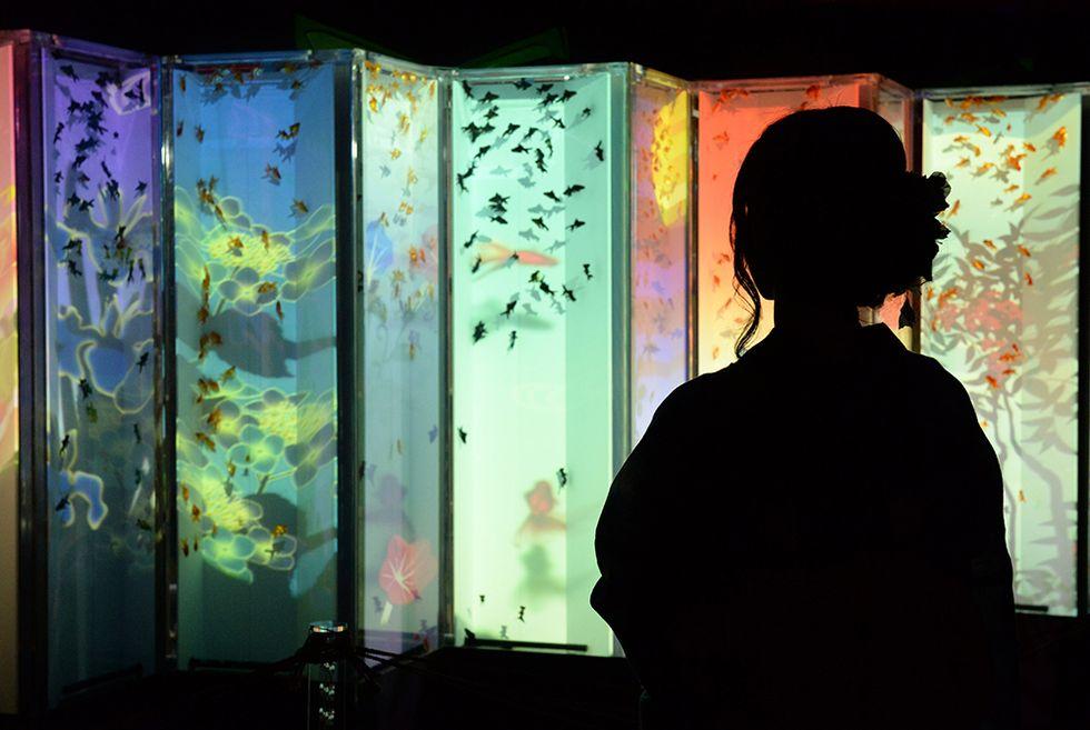 Acquari d'artista in mostra a Tokyo