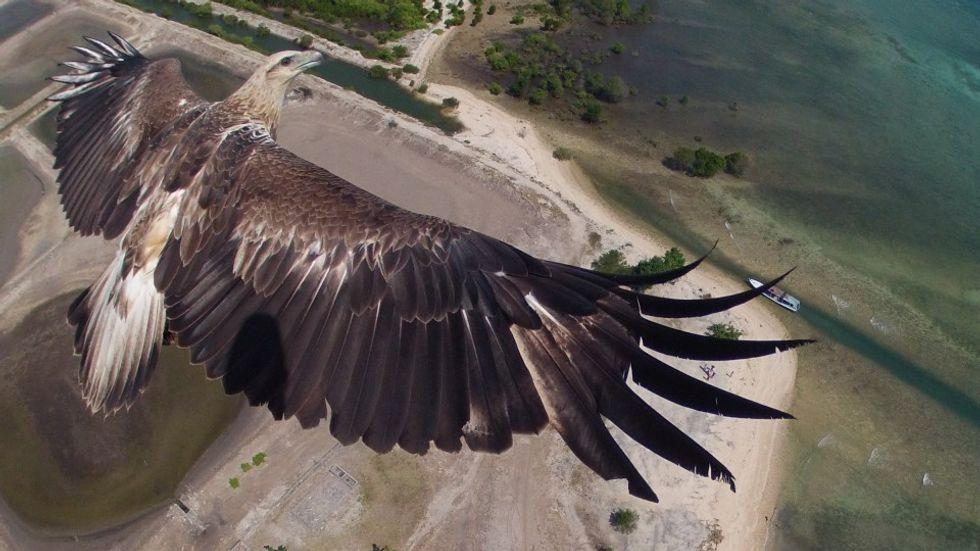 Le foto più belle scattate dai droni