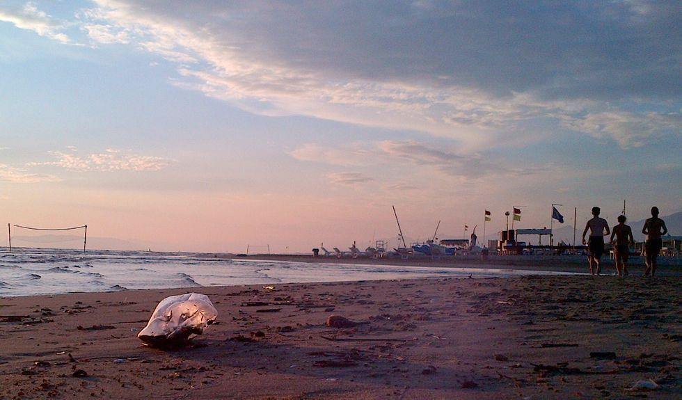 Il mare della Versilia è inquinato?