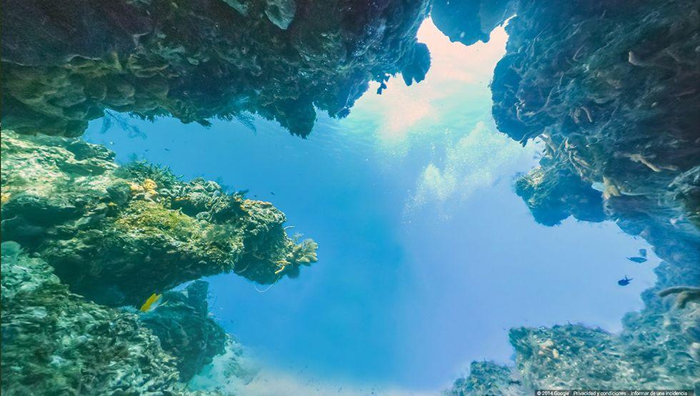 Google Street View sui fondali dell'isola di Cozumel