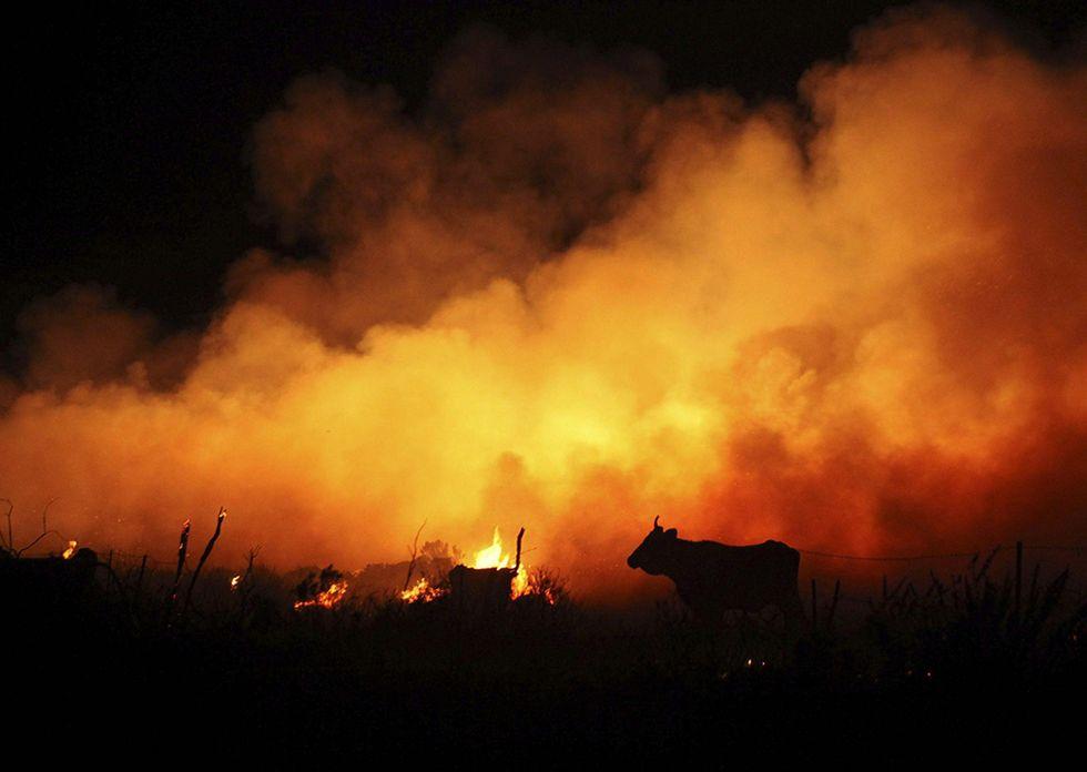 Incendio nei boschi di Cadice e altre foto del giorno, 28.08.2014