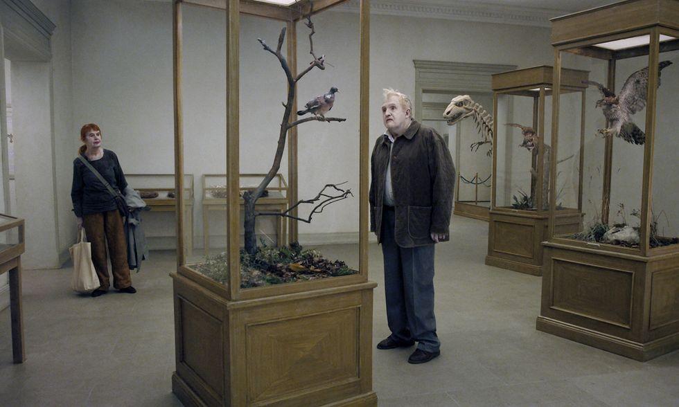 """Venezia 2014, ecco perché il """"piccione"""" di Roy Andersson ha vinto il Leone d'oro"""