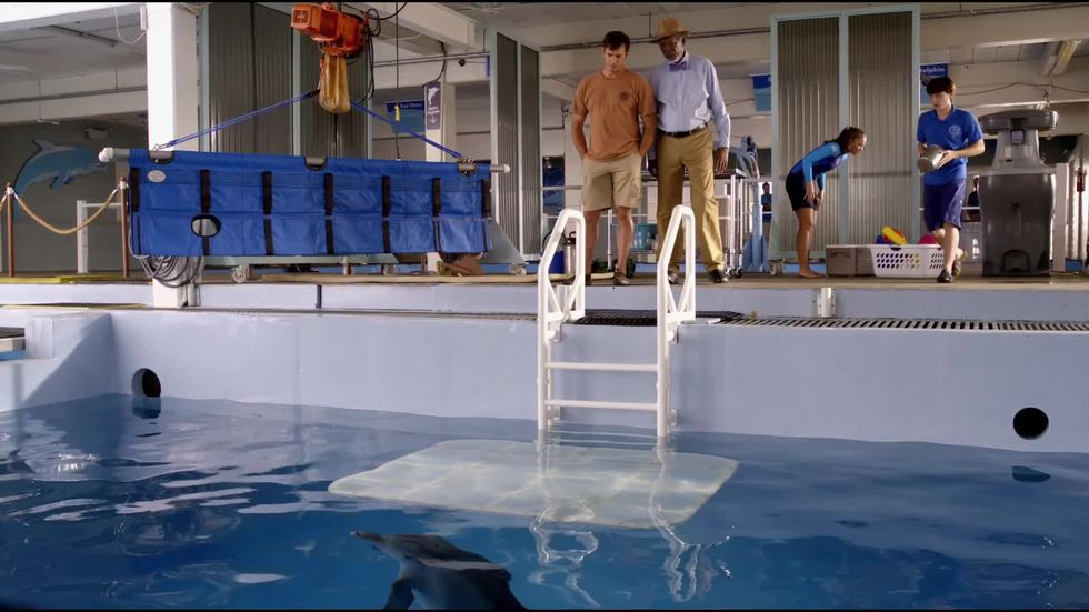 L'incredibile storia di Winter il delfino 2, un estratto del film