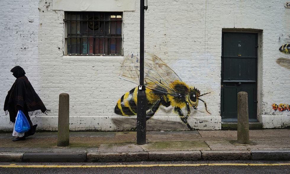 Londra, apicoltura urbana sui tetti